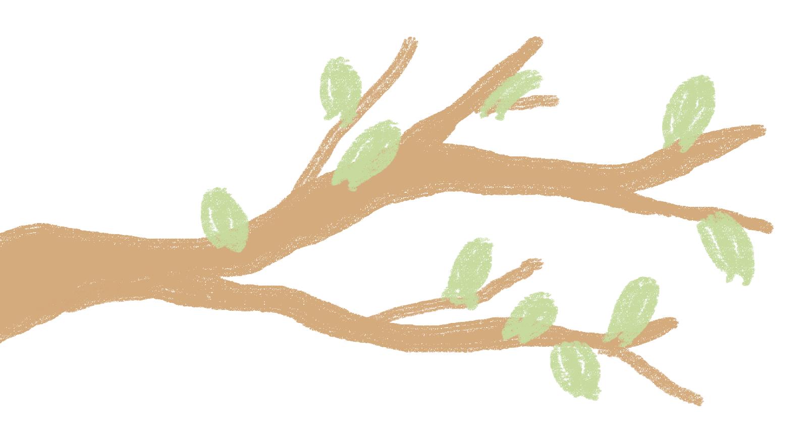 Tree branch illustration