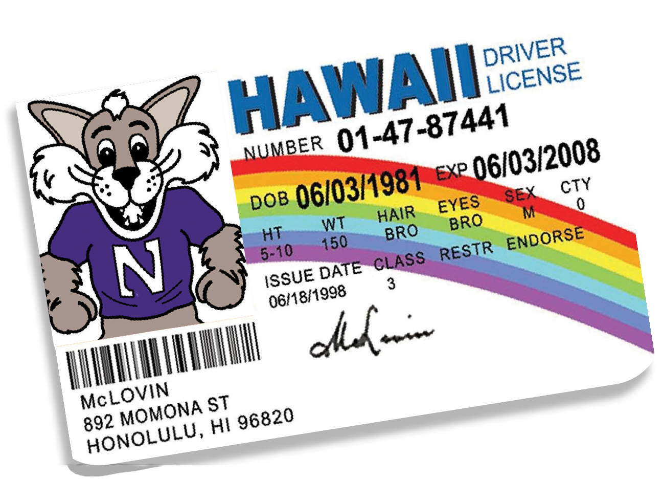The McLovin' Hawaii driver's license from the movie 'Superbad' with Willy the Wildcat's photo on it